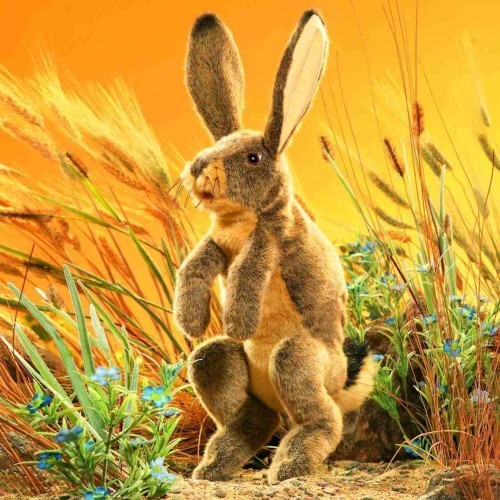 Folkmanis Handpuppe Feldhase / Jack Rabbit