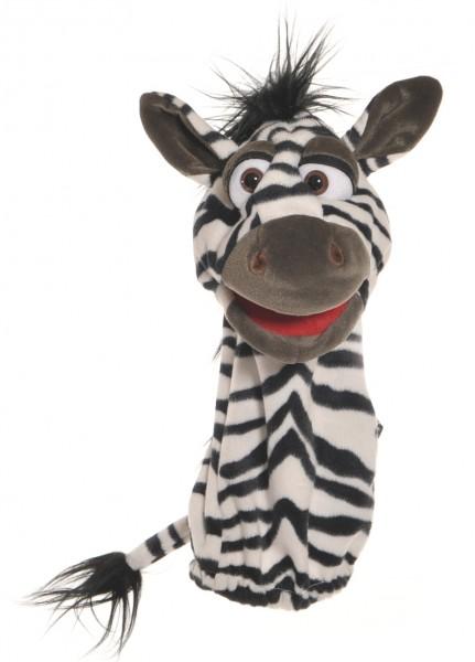 Quasselwurm Zebra