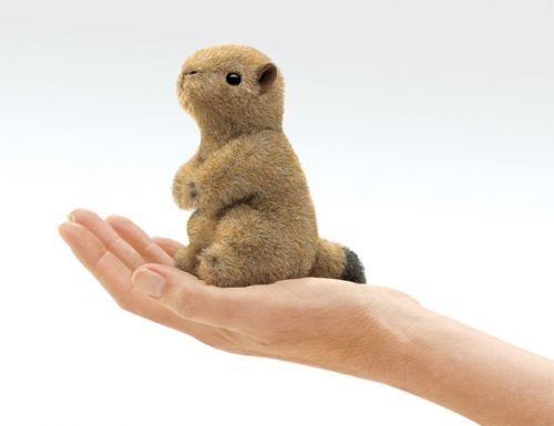 Fingerpuppe Mini Präriehund von Folkmanis