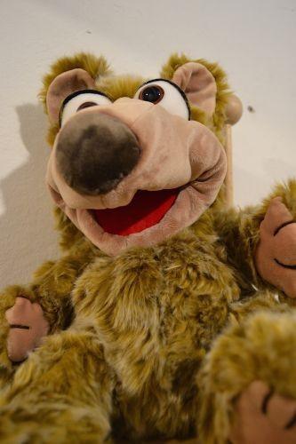 Living Puppets Handpuppe Bär Kito