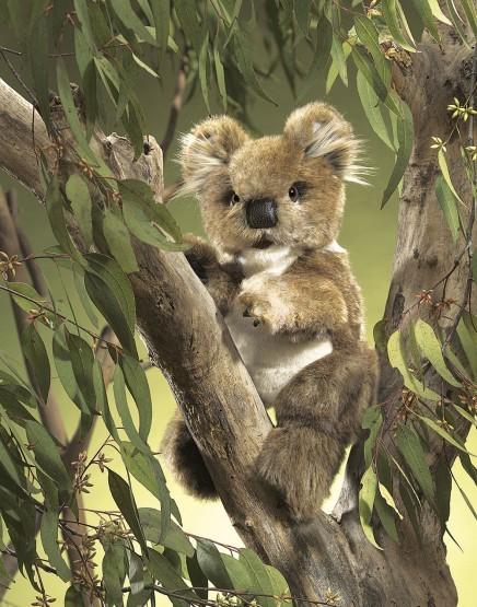 Folkmanis Handpuppe Koala
